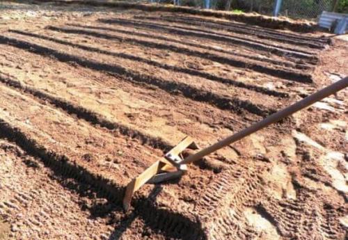 Митлайдера метод картофель. Суть метода