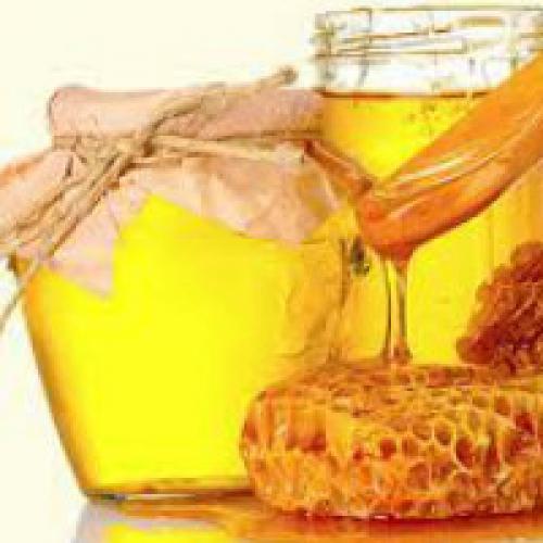 Мед польза для организма. Польза меда для организма человека
