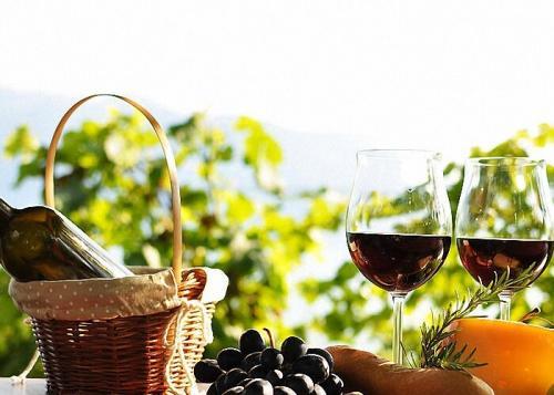 Закваска для виноградного вина в домашних условиях. Изготовление вина из красного винограда