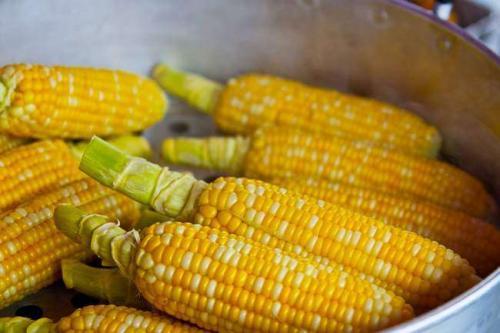 Кукуруза сахарная сорта. Сорта сладкой(сахарной) кукурузы